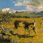 Alpe di Maggio