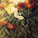 Chrysanthemums, Garden at Petit Gennevilliers, 1893