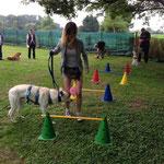 Gemeinsam mit dem Hund über die Hürde, dabei haben die Menschen ein Handycap: ein Luftballon zwischen den Beinen