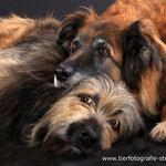 Nanuk und Bonny