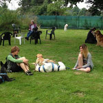 Pause und entspannen mit den Hunden