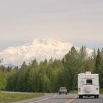 Anfahrt zum Denali NP, Mt. McKinley
