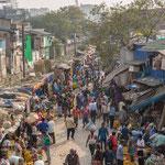 Le marché aux fleurs s'étend de manière totalement anarchique entre les rives de la Hoogly (bras du Gange) et une ligne de chemin de fer