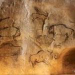 Parc de la prehistoire de Tarascon