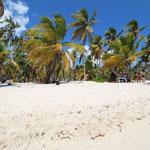 Strand Isla Saona
