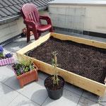 ...Erde reingefüllt, Rasen gesät...