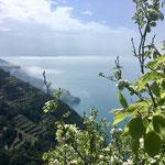 Corniglia - Manarola