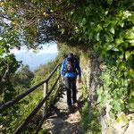 SVA Vernazza - Monterosso
