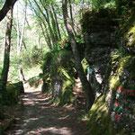 Parco Portofino
