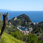 trekking Portofino