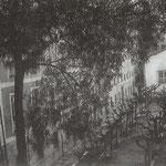 1905 Jardines del Convento de Santa Clara desde el oeste. A la izquierda y al fondo, edificios del antiguo convento reconvertido en Instituto