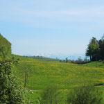 Der Blick auf die Berge vom Balkon der Ferienwohnung 1