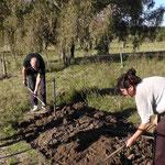 Christian und Claudia bei der Arbeit - Beete anlegen