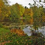 Herbstfarben, Bramfeld - Foto: Lothar Boje