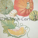 ERBARI  ZUCCHE - affresco a secco su tela con malta e terre naturali colorate - 25x30 cmV