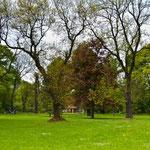 Park Vogelgesang