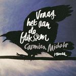 Carmien Michels - Vraag het aan de bliksem