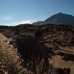 "the volcano ""Teide"""