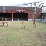 Le Parc Animalier de la Maison de Retraite