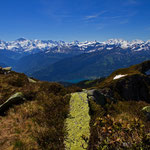 Bilck auf die Gipfel von Eiger, Mönch, Jungfrau und Blümlisalp vom Niedehorn 7. Juni 2014