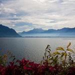 Herbststimmung am Genfersee bei Montreux, 20. 10 .2012