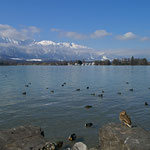 Thunersee mit Stockhornkette, 7. April 2006