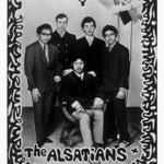 THE ALSATIANS  vlnr: Daan Takarindingan, Joop Abels, Rob Gillet, Davidt Takarindingan en zittend: Jozef 'Joey' Kotta