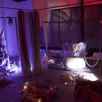 Raumansicht (Linda Werner und Michaela Veigl-Meyer)