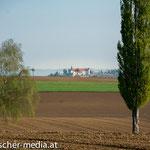Fernsicht auf Schloss Sitzenberg  - 17.04.2014 - (c) Egon  Fischer