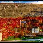 Haus in Hütteldorf