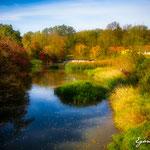 Die Perschling bei Weinzierl - Herbst 2016