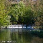 Wehr bei der Aumühle in Atzenbrugg - 17.04.2014 - (c) Egon  Fischer