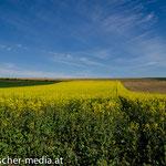 Landschaft im Perschlingtal  - 18.04.2014 - (c) Egon Fischer