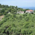 Caribbean hillside.