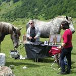 Les chevaux s'en prennent aux affaires d'Anne