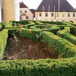 """Rosengarten am Kirchberg; im Hintergrund ehemaliges Gasthaus """"Zum Hirschen"""""""