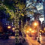 Ankunft in Boston - noch im Dunkeln