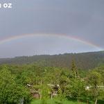 Hammer am Ende des Regenbogens (Beitrag von OZ)
