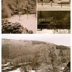 Schnee im März (Bilder von JS, OZ, AW, LJ, SW)