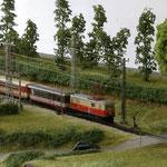 Zug Richtung Mariazell