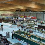 Übersicht über die (fast) gesamte Eishalle