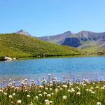 lac verdet