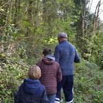 Sidobre - Tarn - Hameau des Gîtes de Thouy - Occitanie - découverte de la nature -oiseaux - forêt en famille