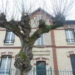 PRECY SUR OISE Rues Plantées / allée H. Youf, rue partagée devant l'école