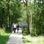 in-folio / Bord de Marne à Châlons en Ch. / promenade et passerelle piéton