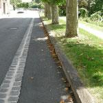 in-folio / Bord de Marne à Châlons en Ch. / rue, banquette arborée et chemin