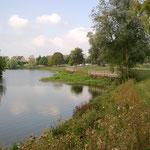 in-folio / Mantes la Jolie / reprofilage de berge sur le lac des Pêcheurs, achevé