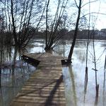 in-folio / Bord de Marne à Châlons en Ch. / promenade lors d'une crue