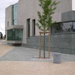 in-folio / PLOEREN centre culturel /   parvis, rues des Deux Moulins