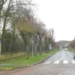 PRECY SUR OISE Rues Plantées / avenue A.de Vigny et le parc du château sur la gauche, en février